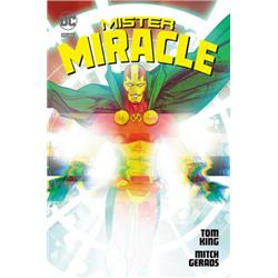 DC DELUXE Mister Miracle-15967